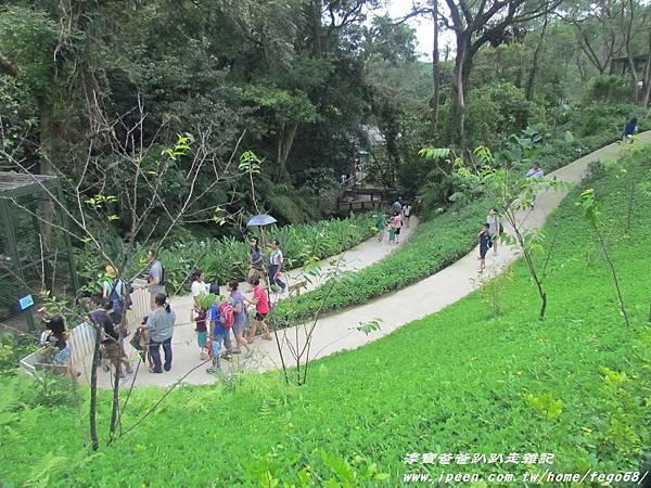 森林鳥花園90.JPG