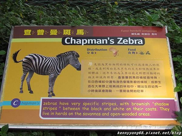 台北動物園030.JPG
