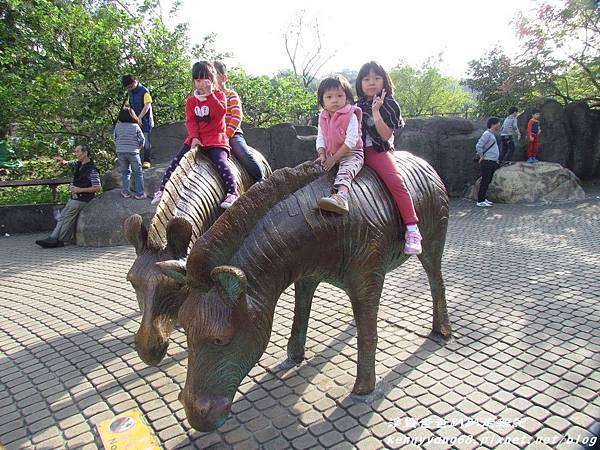 台北動物園034.JPG