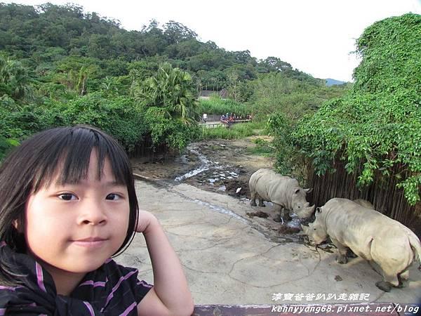 台北動物園056.JPG
