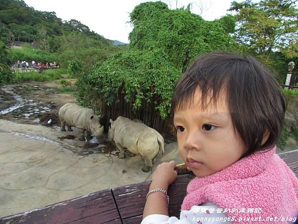 台北動物園055.JPG