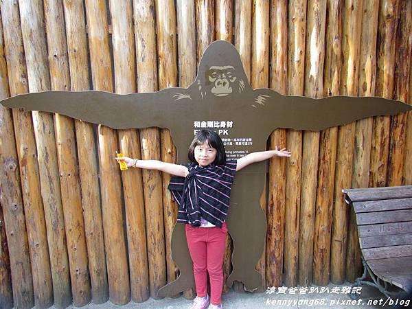 台北動物園063.JPG