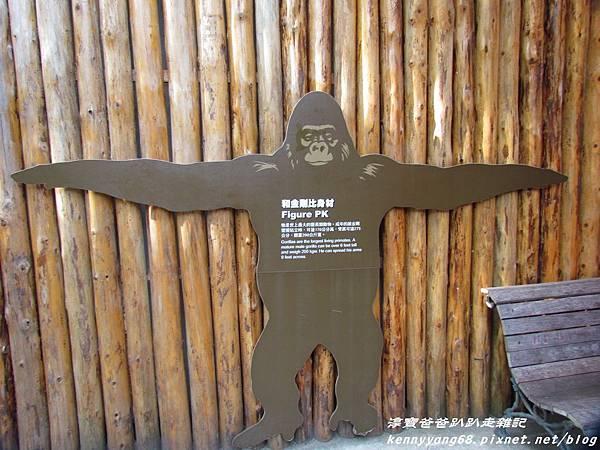 台北動物園062.JPG