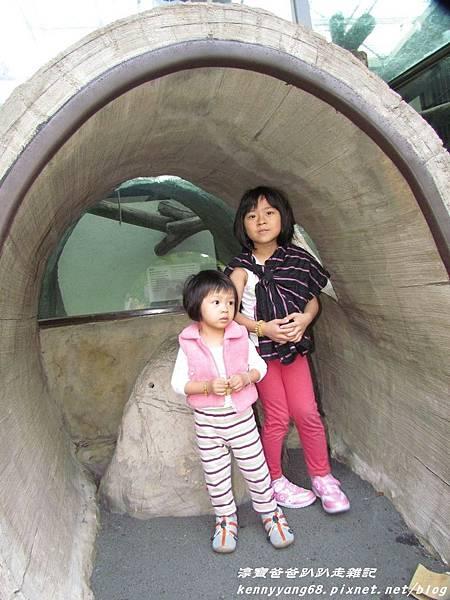台北動物園075.JPG