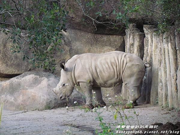 台北動物園076.JPG