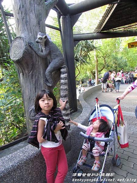 台北動物園081.JPG