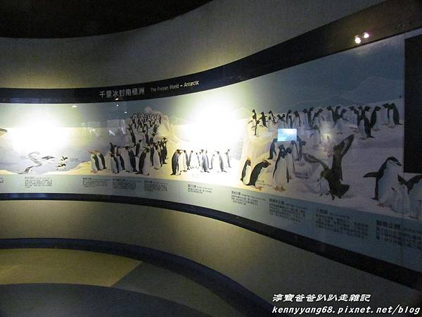 台北動物園084.JPG