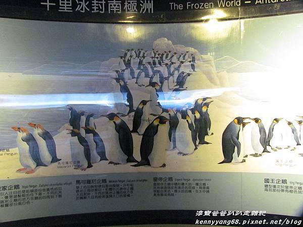 台北動物園085.JPG