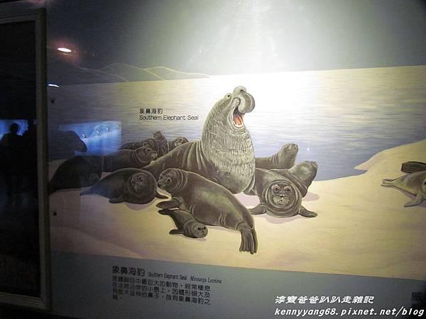 台北動物園086.JPG