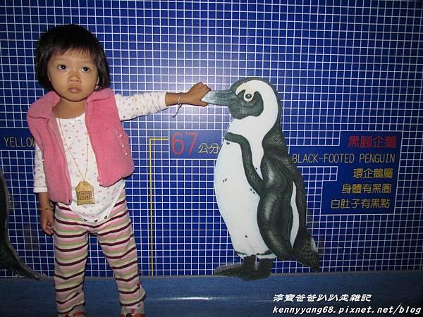 台北動物園090.JPG