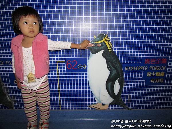 台北動物園089.JPG