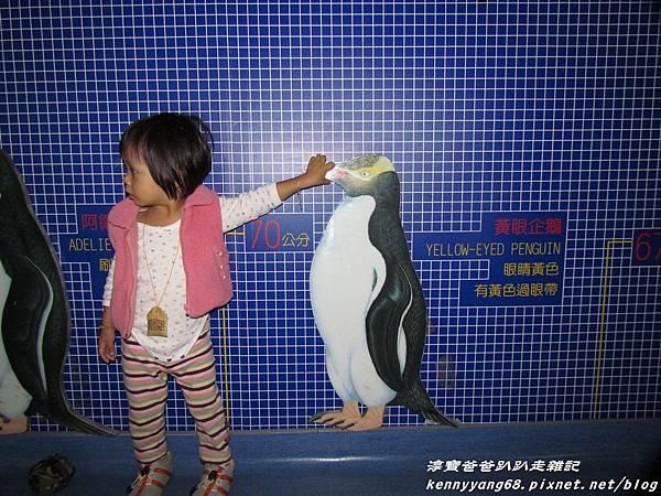 台北動物園091.JPG