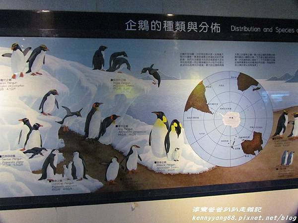 台北動物園095.JPG