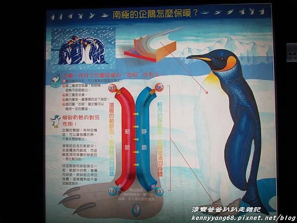 台北動物園097.JPG