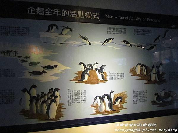 台北動物園096.JPG