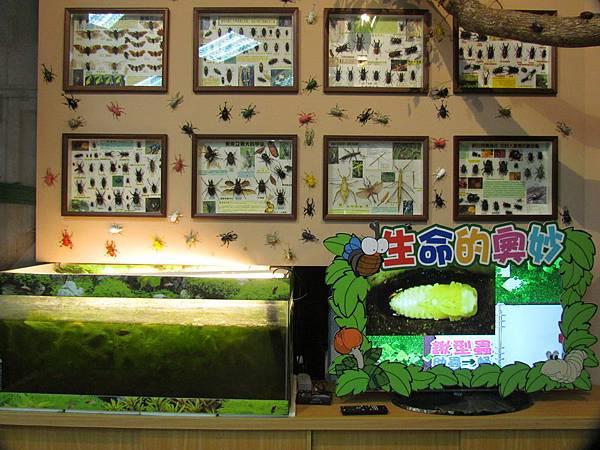 09-叢林生態教室-11.JPG