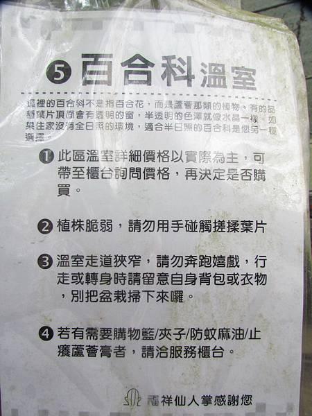 新竹福祥仙人掌-24.JPG