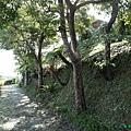 20141025-26-306.JPG