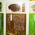 淳寶爸-天一藥廠37.JPG