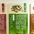 淳寶爸-天一藥廠38.JPG