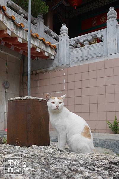 檳城極樂寺 (4)