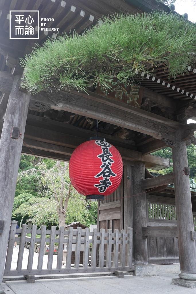 長谷寺 (1).JPG