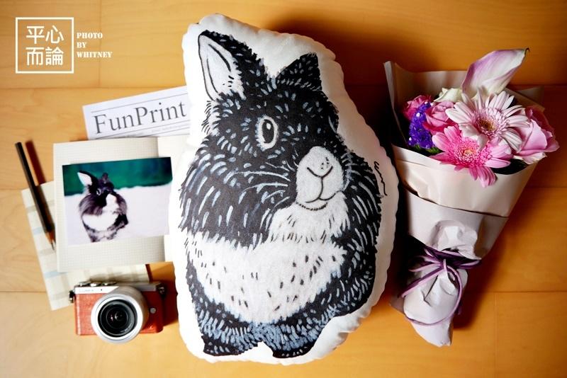 FunPrint 客製 Effy系列插畫 寵物插畫抱枕 (6).JPG