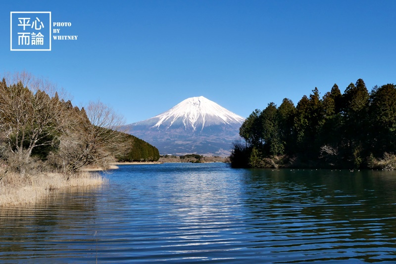田貫湖 (2).JPG
