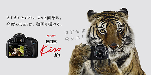 kissx3.jpg