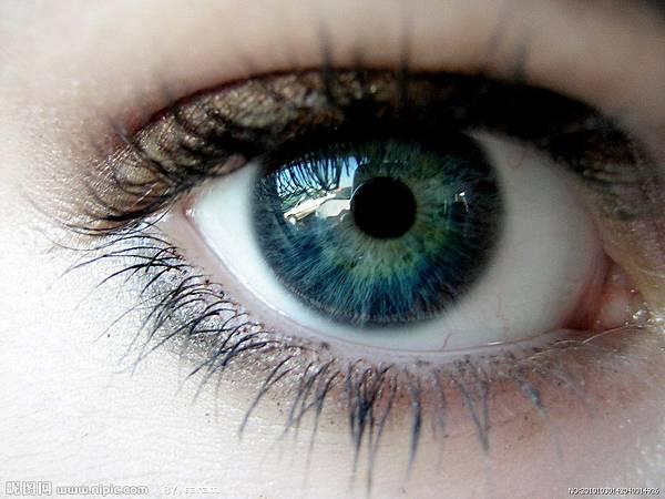 眼睛一.jpg