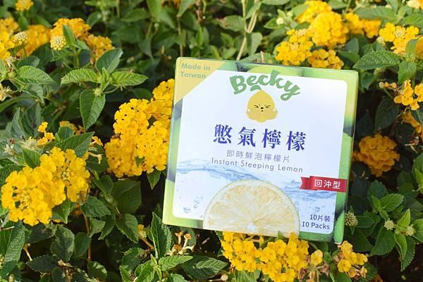 憋氣檸檬 (12)