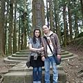 日本人砍太多神木良心不安而立的『樹靈塔』