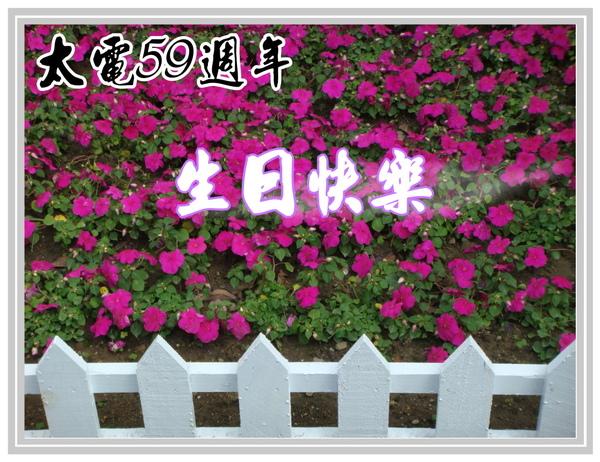 15廠慶禮讚980408.jpg