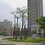 360_高鐵建地 (4)