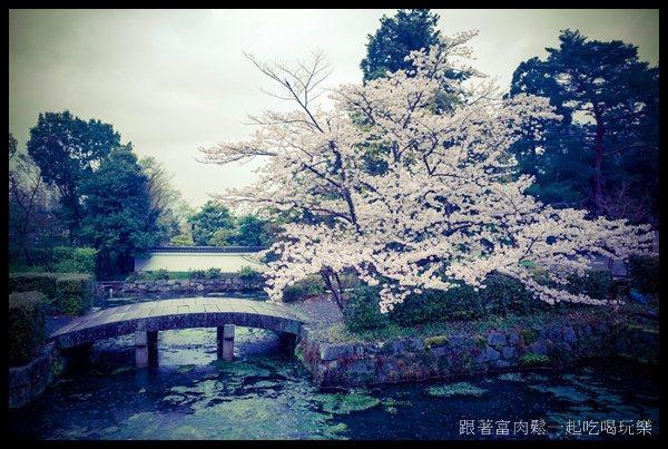 20150403_陳信富0294.jpg