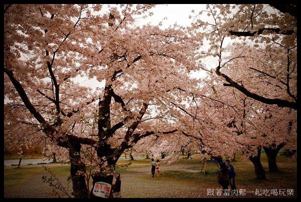 20150404_陳信富0331.jpg