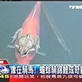 2009.02.06 news-1.jpg