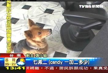2009.03.16 News 1-2.jpg
