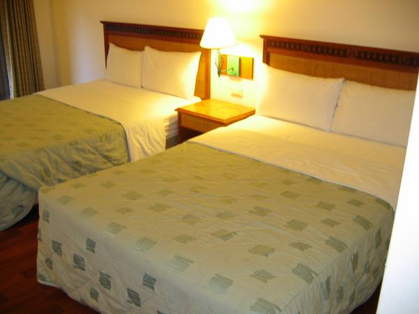 119兩張雙人床,可是我只有一個人阿