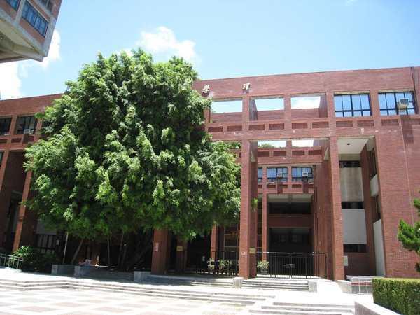 157理院的樹越來越大了.jpg