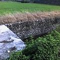 縣政府旁邊的小水溝5