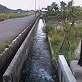 池塘旁的小水溝