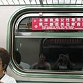 小白坐在女性專用車廂