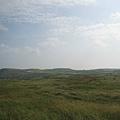 遼闊的草原