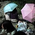 兩把不知名的雨傘
