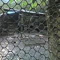 010_一堆火雞