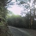 011_產業道路1