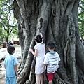 046_有三個小孩子在餵松鼠1