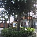 018_大樟樹