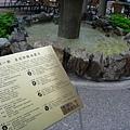 017_皇冠許願池2